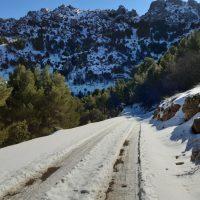 ruta_cortijo_cercadillo4